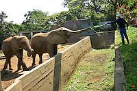 """PEREIRA - COLOMBIA, 22-03-2016: Hoy comienza la operación """"Arca de Noé"""" donde se trasladarán los animales del antiguo zoológico Matecaña de la ciudad de Pereira al nuevo hábitat  Sabana Africana en el bioparque Ukumarí que está ubicado a 14 kilómetros de la ciudad. / Today begins """"Noah's Ark"""" operation where the animals of old Matecaña Zoo will be moved to the new African Savannah habitat at bio park Ukumarí located 14 km fromn the city. Photo: VizzorImage/CONT"""