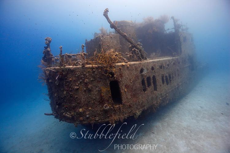 Prince Albert wreck in Roatan, Honduras.