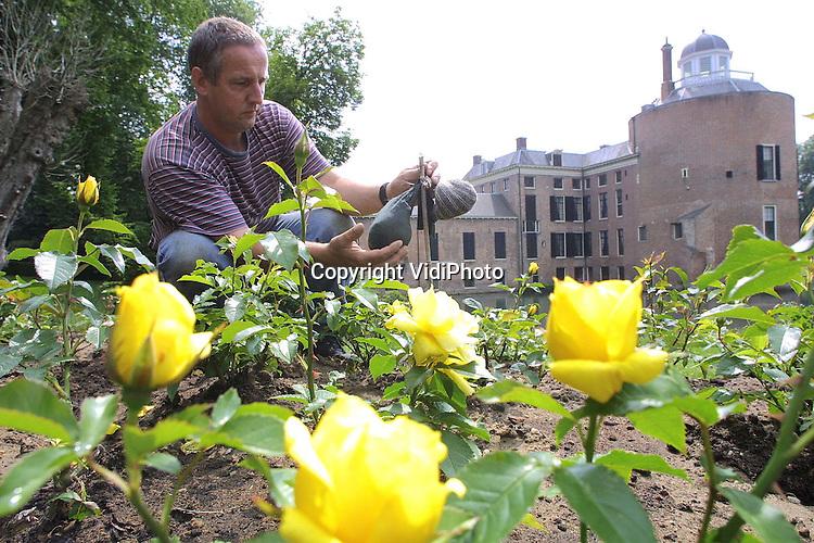 Foto: VidiPhoto..ROZENDAAL - Zakjes met mensenhaar aan de rozenstruiken op kasteel Rosendael moeten er voor zorgen dat de 87 rozensoorten in de tuinen van het beroemde kasteel blijven staan. Tuinman Toon Nelemans (foto), die de rozenshow bedacht, kreeg al snel te maken met vraatzuchtige herten en reeen uit de bosrijke omgeving. Een tip van Staatsbosbeheer om de dieren op afstand te houden met zakjes mensenhaar, blijkt prima te werken. Het haar moet wel regelmatig ververst worden. (tel. nr. kasteel: 026-3707901; werkplaats tuinman: 026-3613922; Nelemans prive: 026-3642228)