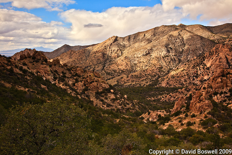 Cochise Stronghold, where Cochise and a band of renegade Apache warriors staged raids and attacks, is a maze of narrow, rock and cliff strewn canyons located in the Dragoon Mountains of Southern Arizona.  This is the West Stronghold Canyon.