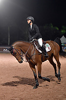 WELLINGTION, FL - FEBRUARY 09: SATURDAY NIGHT LIGHTS: Even though her dad is the 11th richest person in the world Georgina Bloomberg shows she is a class act as she wears tiny diamond earrings and looks determined and focused before she participates in Class 101 - FEI CSI5* $391,000 Fidelity Investments Grand Prix where the winner was Martin Fuchs (Swiss) second place was Kent Farrington (USA) and third was Conor Swail (IRE). The Winter Equestrian Festival (WEF) is the largest, longest running hunter/jumper equestrian event in the world held at the Palm Beach International Equestrian Center. Georgina Leigh Bloomberg is the owner of the equestrian team New York Empire; a professional equestrian; and a philanthropist. She is the daughter of Susan Brown and Michael Bloomberg - former New York City mayor, founder of Bloomberg LP, philanthropist, and the 11th richest person in the world who also might run for the presidency of the united states in 2020 on February 09, 2019  in Wellington, Florida.<br /> People:  Georgina Bloomberg <br /> CAP/MPI122<br /> &copy;MPI122/Capital Pictures
