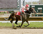 Parx Racing Win Photos_05-2014