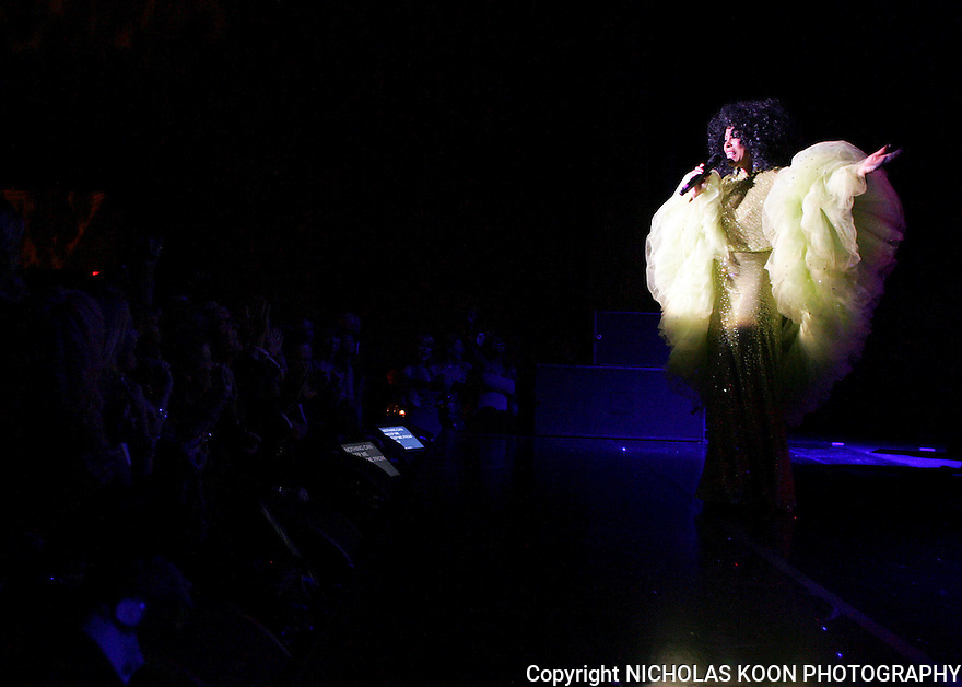 Diana Ross performs at the Segerstrom Center For The  Arts at their 2008 Candlelight dinner.