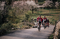 Team Lotto-Soudal takes control over the race to position defending champion Tim Wellens ideally for the finale of the race; in front Jasper de Buyst (BEL/Lotto-Soudal) & Maxime Monfort (BEL/Lotto-Soudal) take their rainjacket off as the sun begins to pear through...<br /> <br /> Trofeo Lloseta - Andratx: 140km<br /> 27th Challenge Ciclista Mallorca 2018