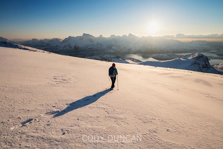 Female hiker descending snowy hillside from summit or Ryten, Moskenesøy, Lofoten Islands, Norway