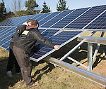 Array of photovoltaic panels for solar energy electricity generation