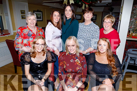 Enjoying Little Christmas in the Brogue Inn on Friday.<br /> Seated l to r: Niamh and Margaret Hurley and Katie Ellard.<br /> Back l to r: Marie and Claire O'Sullivan, Sharon Clancy, Trish and Marion Hurley.