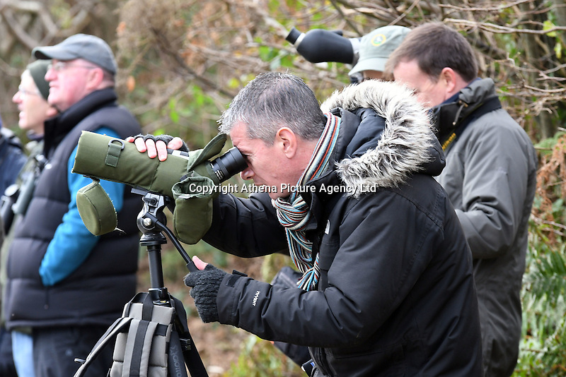 COPY BY TOM BEDFORD<br /> Pictured: Bird watchers gather to watch the masked wagtail in the village of Camrose, west Wales, UK. Saturday 03 December 2016<br /> Re: Birdwatchers from all over Britain have turned up in a tiny Welsh village to see the first recorded visit of a masked wagtail.<br /> The species is normally found in Kazakhstan, Iran and Afghanistan but may have been brought here by the icy temperatures.<br /> It was spotted on the roof of a semi-detached house in Camrose, Pembrokeshire, yesterday(tues) but local birdwatchers were unable to identify it.<br /> An expert arrived and the bird was confirmed as the masked wagtail which has never been seen before in the British Isles.<br /> More than 40 twitchers drove through the night and slept in their cars to get the first glimpse of the bird seen flying between chimney pots in the village.<br /> Police were called because so many visitors turned up in the village, blocking country lanes and disturbing locals.<br /> But most locals welcomed the  birdwatchers, even making them cups of tea as they kept watch on the bird with binoculars and cameras.