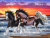 Interlitho, Lorenzo, REALISTIC ANIMALS, paintings, 3 horses, beach(KL3992,#A#) realistische Tiere, realista, illustrations, pinturas ,puzzles