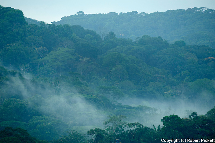 View over Jungle Canopy, Misty Clouds, Panama, Central America, Gamboa Reserve, Parque Nacional Soberania