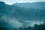 View over Jungle Canopy, Misty Clouds, Panama, Central America, Gamboa Reserve, Parque Nacional Soberania