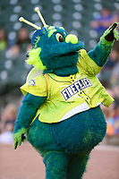 Mason, the mascot of the Columbia Fireflies, in a game against the Augusta GreenJackets on Friday, May 31, 2019, at Segra Park in Columbia, South Carolina. Augusta won, 8-6. (Tom Priddy/Four Seam Images)