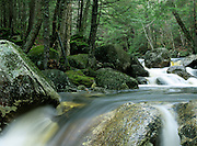 Harvard Brook in the White Mountain National Forest in New Hampshire USA. This area was part of the Gordon Pond Railroad, which was a logging railroad in operation from 1907-1916.
