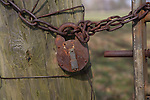 Close up rusty chain and padlock on gate post
