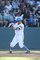 Darrell Miller Jr (31) of the UCLA Bruins bats during a game against the Oregon State Beavers at Jackie Robinson Stadium on April 4, 2015 in Los Angeles, California. UCLA defeated Oregon State, 10-5. (Larry Goren/Four Seam Images)