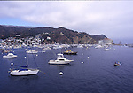 Avalon harbor