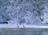 Marek, CHRISTMAS LANDSCAPES, WEIHNACHTEN WINTERLANDSCHAFTEN, NAVIDAD PAISAJES DE INVIERNO, photos+++++,PLMP0470Z,#xl#