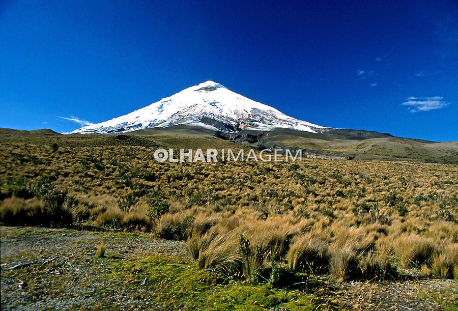Vulcão no Parque Nacional Cotopaxi. Equador. 2001. Foto de Rogério Reis.