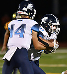 Mater Dei quarterback Reed Braundmeier (left) hands off to running back Zach Napovanice. Mater Dei played football at Althoff on Friday September 13, 2019. <br /> Tim Vizer/Special to STLhighschoolsports.com