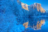 El Capitan reflected in Merced River, California Yosemite Natiional Park Sierra Nevada Mountains