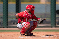 Los Angeles Angels catcher Mario Sanjur (2) during an Extended Spring Training game against the Chicago Cubs at Sloan Park on April 14, 2018 in Mesa, Arizona. (Zachary Lucy/Four Seam Images)