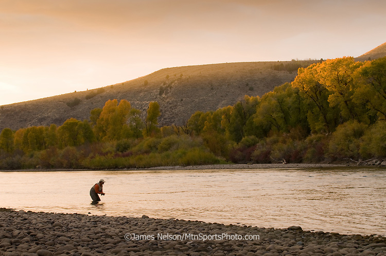 An angler fly fishes for trout during an autumn evening on the South Fork of the Snake River, Idaho.