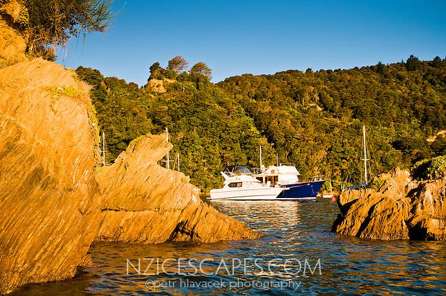 Boat in Ngakuta Bay in Marlborough Sounds , New Zealand