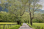 A country road (Hyatt Lane) in Cades Cove, Great Smoky Mountains National Park, TN, USA