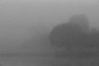 Fog on North Lake, Irvine 35mm Film