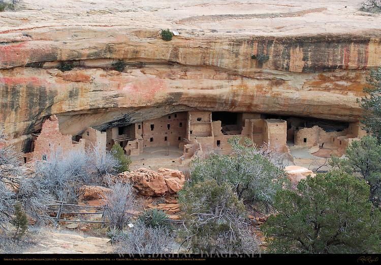 Spruce Tree House Cliff Dwelling, Anasazi Hisatsinom Ancestral Pueblo Site, Chapin Mesa, Mesa Verde National Park, Colorado