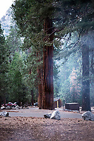 Sheep Creek campground in Kings Canyon National Park, California.