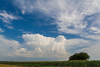 Dramatic storm clouds and blue sky on a summer day in the North Texas area. Scene photographed in a rural area near the city of Palmer, Texas.