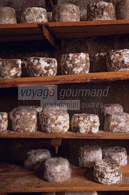 Europe/France/Rhône-Alpes/74/Haute-Savoie/Manigod: Affinage des persillés chez Simon Veyrat