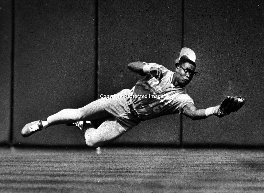 Bo Jackson playing for the KC Royals makes a diving catch, 1990. Copyright Ron Riesterer