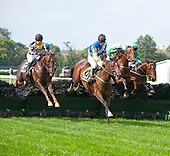 Lonesome Glory - William Entenmann Stakes - Belmont Park - 9/27/12