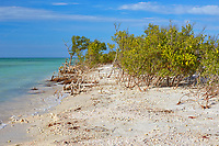 Scenic view during a winter afternoon at Honeymoon Island State Park in Pinellas County