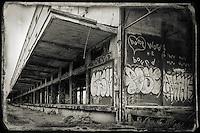 Industrial degeneration 3