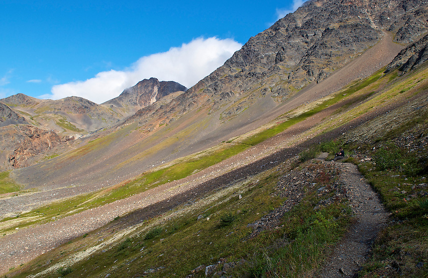 The Iditarod Trail in Crow Creek valley near Crow Pass in Chugach National Forest, Alaska, United States.