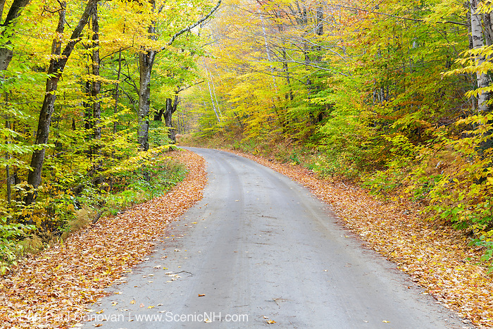 Autumn foliage along the Sawyer River Road in Livermore, New Hampshire USA during the autumn season.