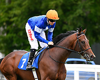 Jamie Spencer onboard La Rav go down to the start of The Bathwick Tyres Maiden Stakes, during Afternoon Racing at Salisbury Racecourse on 13th June 2017