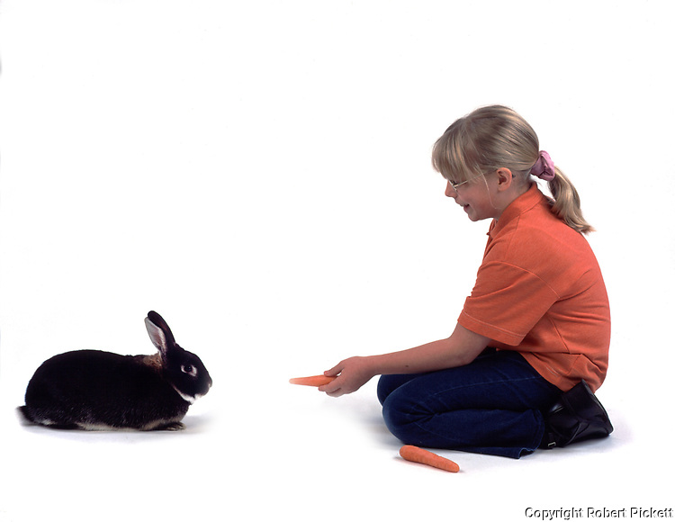 Young Girl feeding Pet Rabbit, aged 10 years old, domestic, white background, cut out, studio, carrot