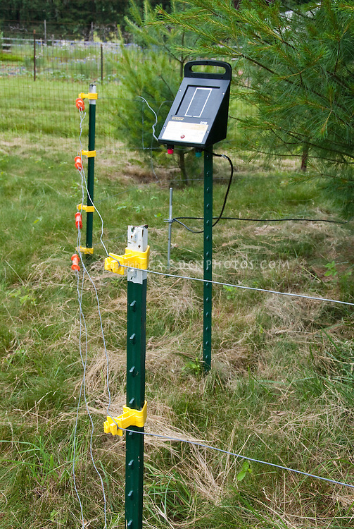 electric fence powered by solar to keep out deer and large animals from garden