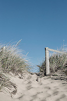 Dune path to the beach, Cape Cod, Massachusetts, USA