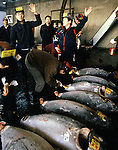 At 5:30 a.m. the auction begins with buyers bidding on tuna at the Tsukiji Fish Market in Tokyo, Japan where a skilled army of licensed middlemen and buyers purchase tuna and a variety of seafood for sale in the market's 1,400 shops. Because of the Japanese passion for freshness, all the fish sold will be consumed by Tokyo residents the following day. (Jim Bryant Photo).....