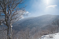 After the winter storm, Roan Highlands