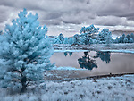 The Pond at Aspen Corner (Infrared) ©2018 James D Peterson.  A stormy autumn day makes for a dramatic infrared image among the San Francisco Peaks of northern Arizona.  Although there aren't actually any aspens in this scene, the ponderosas and other conifers provide their own ethereal glow when viewed in this invisible light.