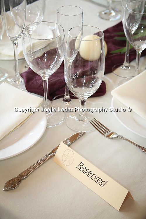 Heather & Derek Wedding Nov 2014 Avila Beach Sycamore Mineral Hot Springs by Joelle Leder Photography Studio