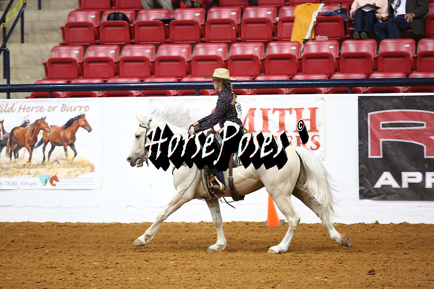 Mustang Million Legends Exhibited By: Kirsten Cardenas Adopter: Clint Swensen Mustang: Cappy HMA: Paisley Desert, OR All rights reserved, www.HorsePoses.com All photos are proofs and finalized upon sale.