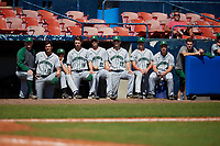 Dartmouth Big Green bench, including Nathan Skinner (15), Trystan Sarcone (14), Logan Adams (10), Jonah Jenkins (32), Oliver Campbell (27), Austen Michel (35), and Max Hunter (19), during a game against the Bradley Braves on March 21, 2019 at Chain of Lakes Stadium in Winter Haven, Florida.  Bradley defeated Dartmouth 6-3.  (Mike Janes/Four Seam Images)