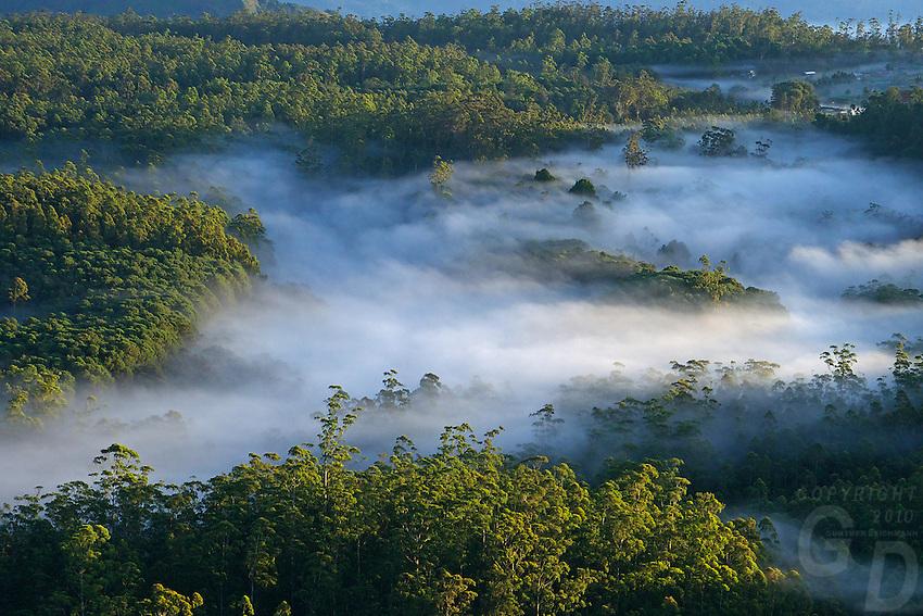 Sunrise and the mountains in Nuwara Eliaya shrouded in clouds, Sri Lanka